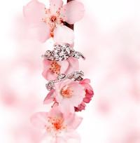 戴比尔斯钻石珠宝情人节爱之献礼:浓情蜜意与浪漫点滴